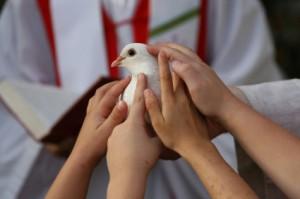 hand_dove